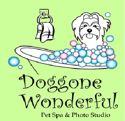 Doggone Wonderful